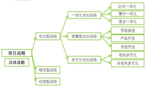 金属铅项目战略
